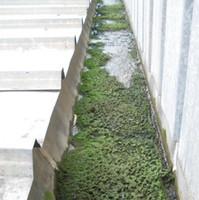 Limpieza y reparación de canales